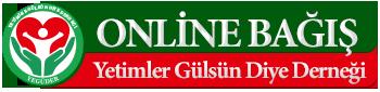 onlinebagis